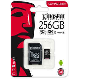 Kingston Canvas Go Micro SD SDHC Memory Card 90MB/s UHS-1 V30 Class 10 with SD Adapter - 256GB